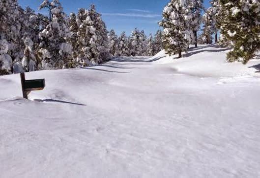 Agricoltura piccola era glaciale pagina 3 for Planimetrie 1500 piedi quadrati ranch