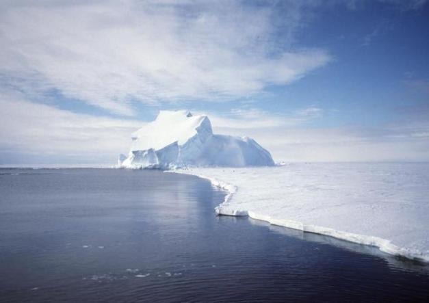 antarcticashelf