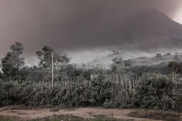 Sinabung2014_2083