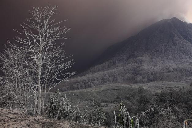 Sinabung2014_2163